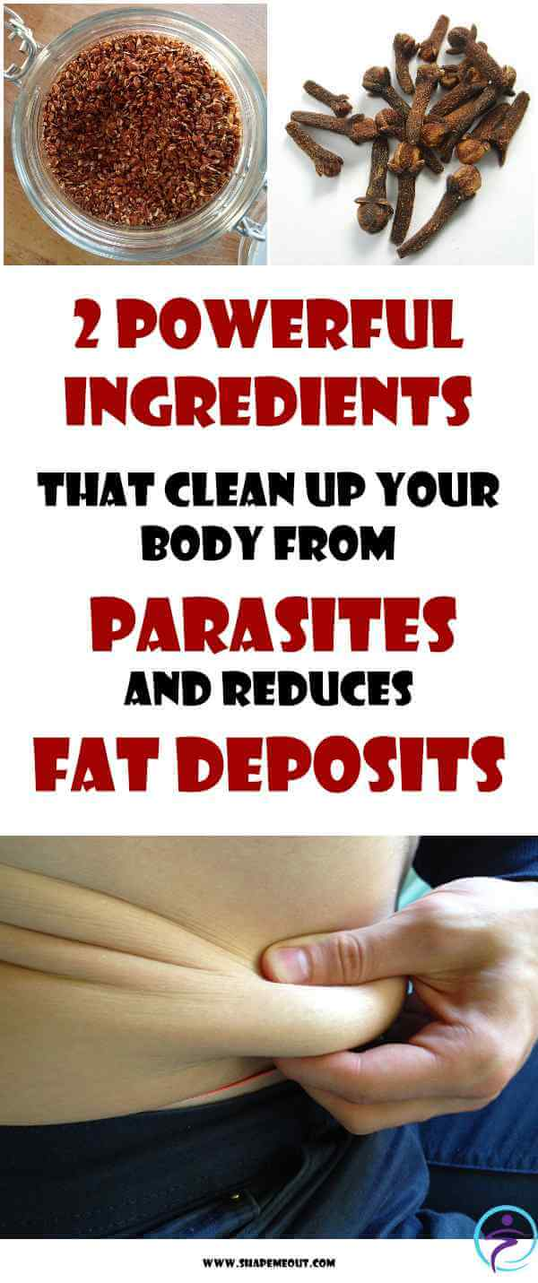 Powerful Ingredients That Clean Up Your Body From Parasites And Reduces Fat Deposits